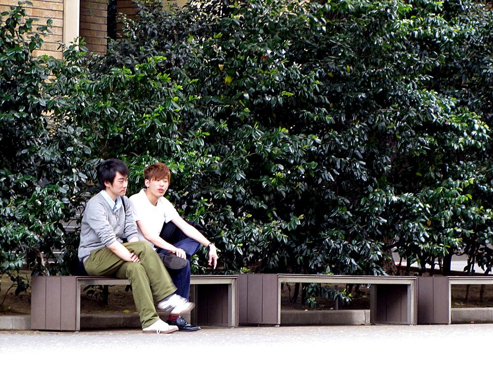 일본유학 일본대학원 2016년도 합격 리스트