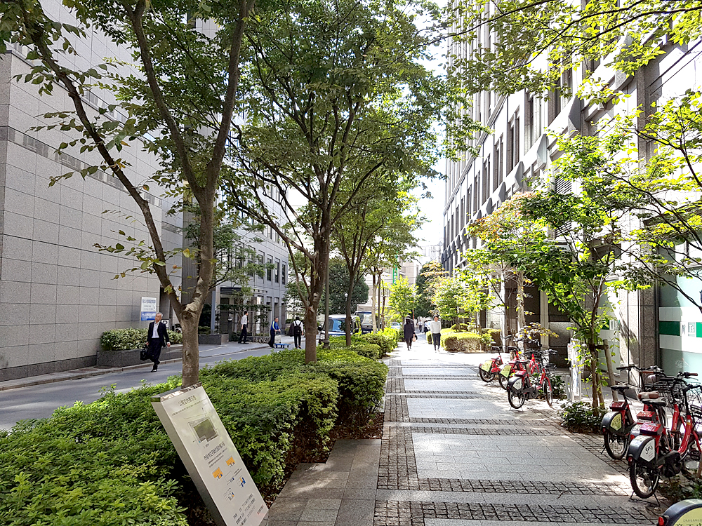 동경갤럭시일본어학교