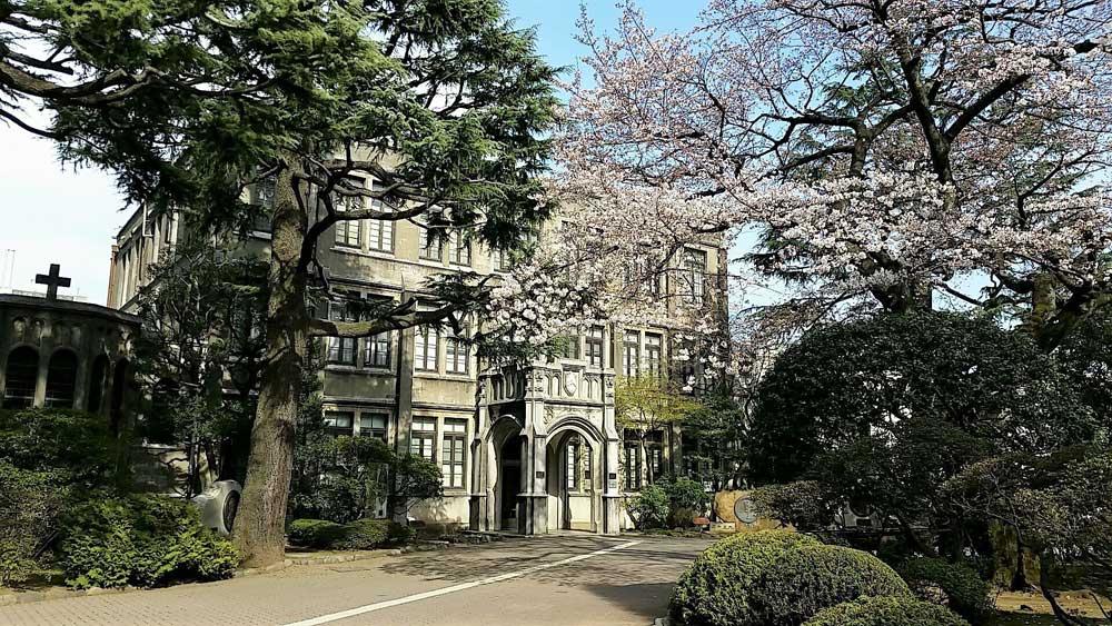 아오야마가쿠인대학 국제정치경제학부 합격후기